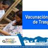 Educación Sanitaria, Vigilancia Epidemiológica y Acciones Preventivas en Aves de Traspatio