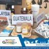 Trazabilidad de la Cadena de la Miel en Guatemala