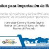 Requisitos para Importación de Harinas