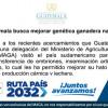 Guatemala Busca Mejorar Genética Ganadera Nacional