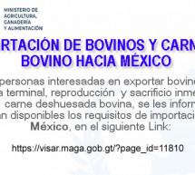 Exportación de Bovinos y Carne de Bovino hacia México