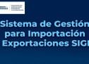 Emisión de Constancias de Importación en Línea para Productos de Bajo Riesgo