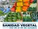 Semana Internacional de la Sanidad Vegetal