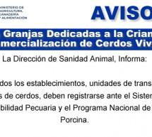 Granjas Dedicadas a la Crianza y Comercialización de Cerdos Vivos